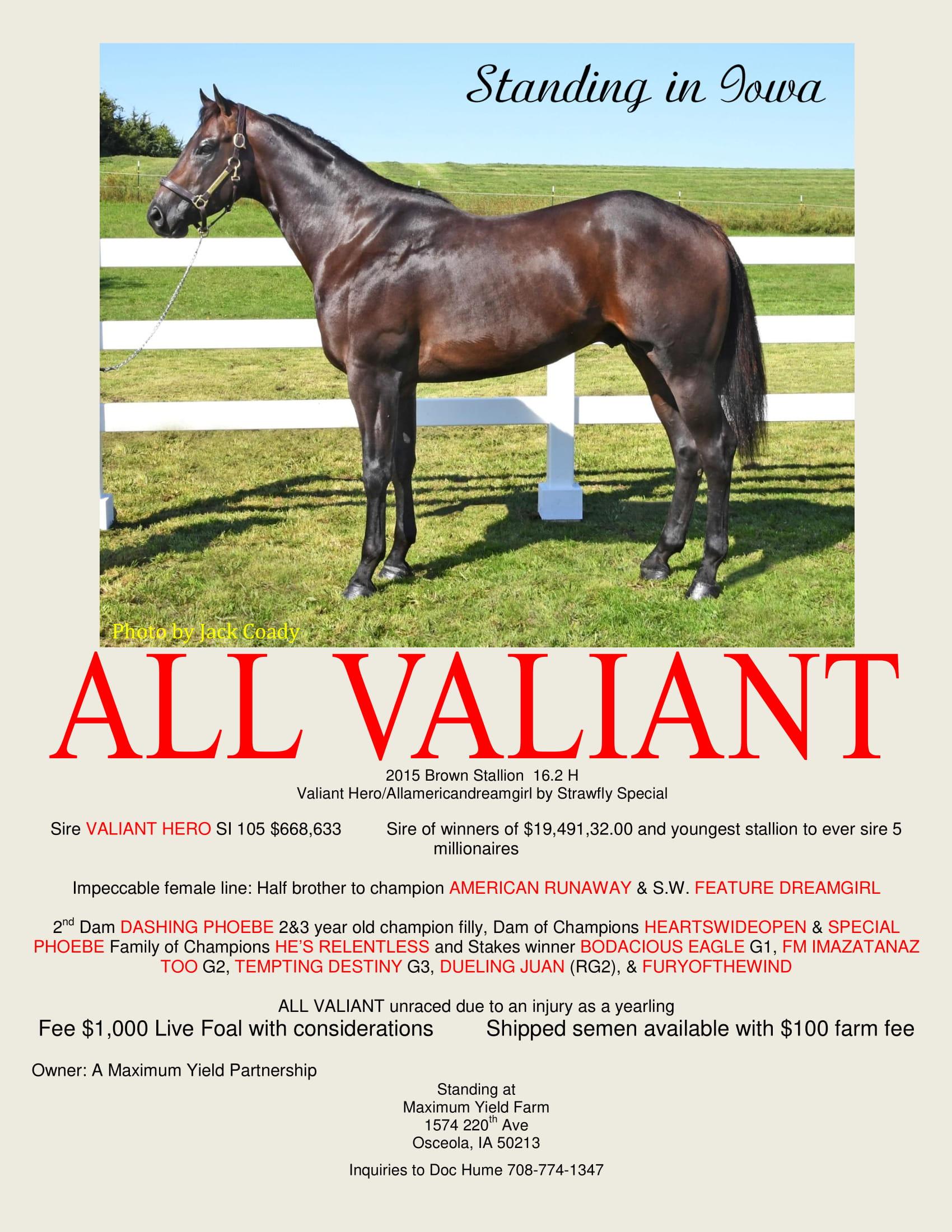 All Valiant